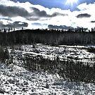 Landscape Snow by terrebo
