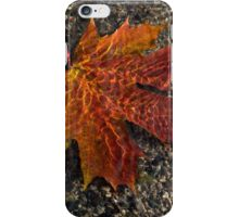 Colors and Patterns  iPhone Case/Skin