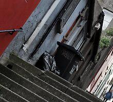 Shandon Steps by michaelpaule