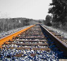 On Track by Richard  Bianco
