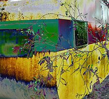 ~~ Give me a Home ~~``Among the Gum Trees~~Caravan  by Virginia McGowan