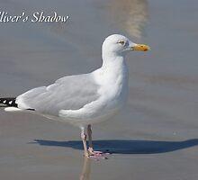Gulliver's Shadow by JpPhotos
