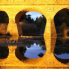 Richmond Bridge by Anthony Woolley
