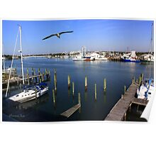 The Boatyard ~ A Gull's View Poster