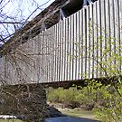 The Black (Pugh's Mill) Covered Bridge by Dave & Trena Puckett