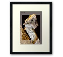 Reptile breaking out Framed Print