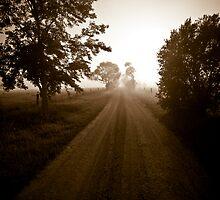morning mist at milton by marko1953