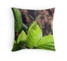 small green spider Throw Pillow