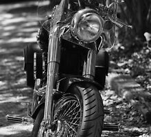 The Motorcycle by Karl F Davis