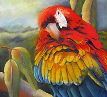 Fluffing a plumb  (Macaw) by Sandra  Sengstock-Miller