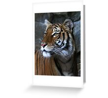 Untamed Beauty Greeting Card