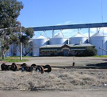 Grain Silos at Yarrawonga Railway Station by David Hunt