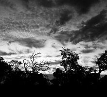 Monochrome Sunset by AlisonOneL
