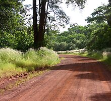 Redsoil track by Heinz