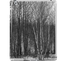 Whispers in the woods iPad Case/Skin