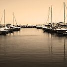 Harbour by Cordelia