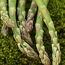 Moss and Asparagus by mistyrose