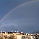 Rainbow by Ilunia Felczer