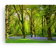Never Too Old - to Play Amongst Bluebells Canvas Print