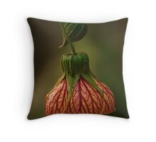 lanterns#3 Throw Pillow