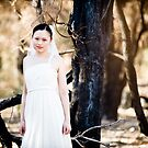 A bride and a burnt landscape. by Hien Nguyen