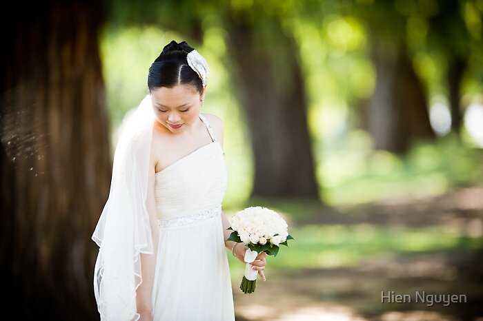 The wedding bride by Hien Nguyen