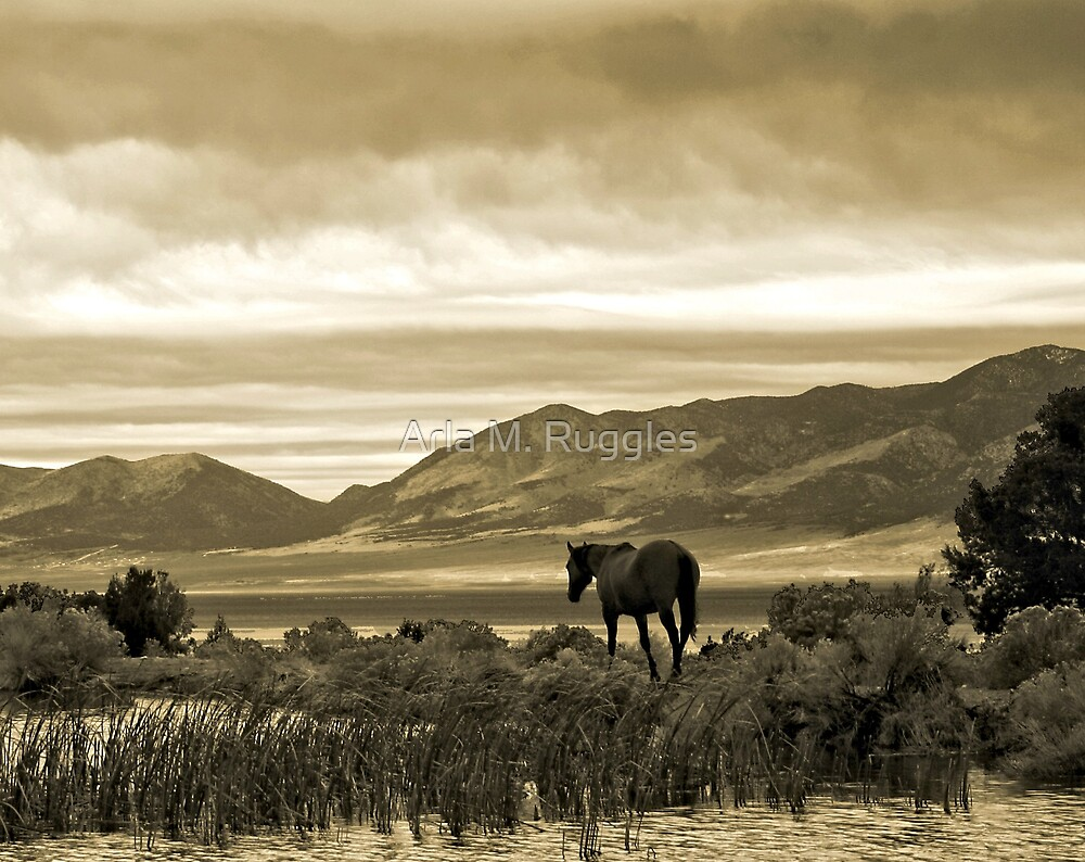 Twilight Pastoral by Arla M. Ruggles
