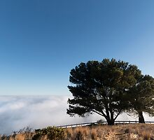 Standing at the Edge of Heaven & Earth by SeeOneSoul