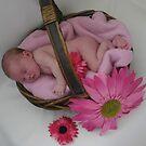 Beautiful Basket by Cydell