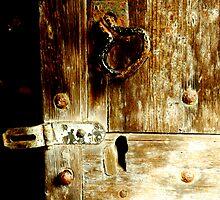 Old wooden door by Karen  Betts