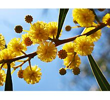 Yellow balls Photographic Print