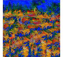 1563 Abstract Thought Photographic Print