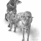three dog family drawing by Mike Theuer