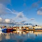 Killybegs Harbour by David Clarke