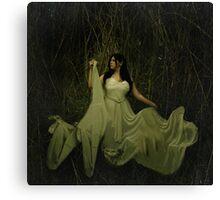 Mistress of decay Canvas Print