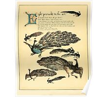 The Buckle My Shoe Picture Book by Walter Crane 1910 52 - Eight Peacocks in the Air Poster