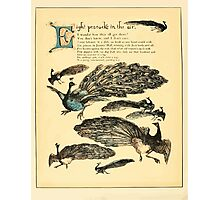 The Buckle My Shoe Picture Book by Walter Crane 1910 52 - Eight Peacocks in the Air Photographic Print