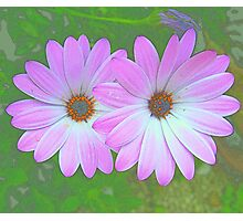""" Flower Power."" Photographic Print"