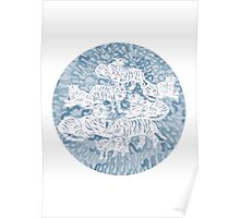White and blue tigers Poster