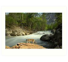 1200-American Southwest Wilderness Art Print
