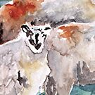 Alerted Sheep by Claudia Dingle