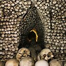 Cathedral of Bones by Robyn Lakeman