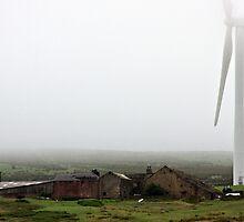 Wind farm by Mark  Coward