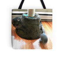 Playing Cat Tote Bag
