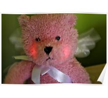 Pink Teddy Poster