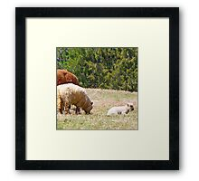 Someone To Watch Over Me   Framed Print