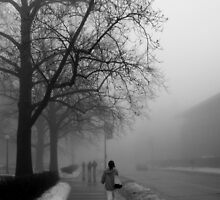 Walk in the Fog by Tracy Engle