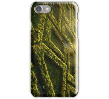 Green Wall iPhone Case/Skin