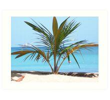 Carribean Beach Art Print