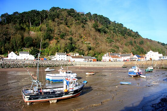 Minehead Harbour II by Dave Law